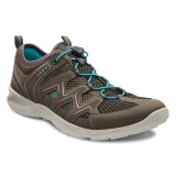 ECCO TERRACRUISE LADIES damesko, TERRACRUISE LADIES damesko, Warm Grey/Dark Clay/Turquoise